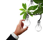 Light bulb in hand — Stock Photo
