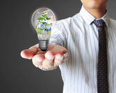 Light bulb in hand — Stockfoto
