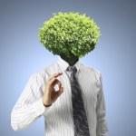 Head Trees — Stock Photo