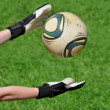 Goalkeeper catches a ball — Stock Photo