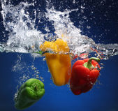 Three peppers falling into water. Blue background — Stock Photo