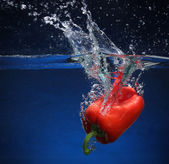 Red pepper falling into water. Blue background — Stock Photo