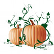 Pumpkins — Stock Vector #11415228