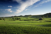 Beautiful green and blue landscape — Stock Photo