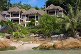 Dům na tropické pláži na ostrově koh samui, thajsko — Stock fotografie