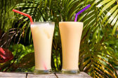 Pair of fruit shakes — 图库照片