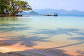 Shade palm trees on the sea — Stock Photo