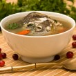 Fresh-soup — Stock Photo #10927725