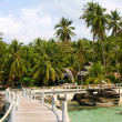 Stock Photo: Seand pier from palm trees