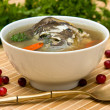 Delicious soup of the carp with potatoes, carrots and parsley — Stock Photo #11076565