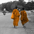 Cambodimonks walking on road — Stock Photo #11378615