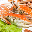 Stock Photo: Red Crabs