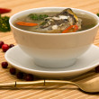 Fresh-soup — Stock Photo