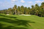 Zielone pole golfowe — Zdjęcie stockowe
