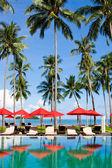 Luxury Palms Sea — Stock Photo