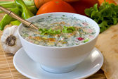 Russian cold soup - okroshka — ストック写真