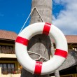 Lifebuoy — Stock Photo #11410975