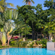 Stock Photo: Luxurious swimming pool in tropical garden