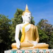 Buddha — Stock Photo #11523502