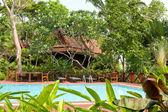 Swimming pool , Thailand — Stock Photo