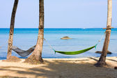Sea, beach, jungle and hammock - vacation background — Stock Photo