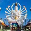 Statue of Shiva — Stock Photo #11548669