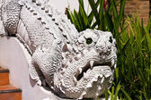 Dragon statue at a temple in Chiang Mai, Thailand — Stock Photo