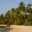 Beautiful tropical beach — Stock Photo #11639178