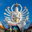 Statue of Shiva — Stock Photo #11998273