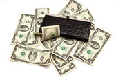Woman leather purse and paper money — Stock Photo