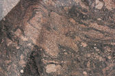 Abstract colot stone texture — Stock Photo