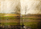 Rural landscape with texture of parchment — Stock Photo