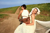 Bride and groom in the village — Stock Photo