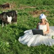 Bride with a laptop on a summer field — Stock Photo #11727391
