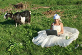 Bride with a laptop on a summer field — Stock Photo