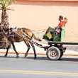 An arabian man driving a horse — ストック写真