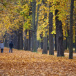Family walking through alley in fall — Stock Photo