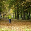 Nordic walking womin vibrant autumn forest — Stock Photo #11341162