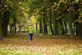Nordic walking woman in vibrant autumn forest — Stock Photo