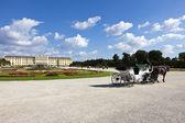 Schoenbrunn Palace vienna — Stock Photo