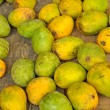 Ripen mangoes — Stock Photo