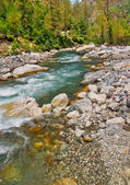 Mountain river bed with scattered boulders and clean water — Stock Photo