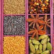 Panel of spices — Stock Photo