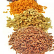 Row of spices seed — Stock Photo
