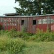 Stock Photo: Old Red Caboose