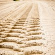Trace on sand - Stock Photo