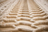 Wheel tracks on dirt — Stock Photo