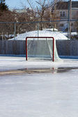 Ice hockey net on melting ice — Stock Photo