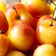 Stock Photo: Rainier cherries
