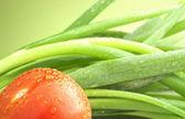 Domates ve yeşil soğan — Stok fotoğraf